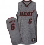 Camiseta Moda Estatica Miami Heat LeBron James #6 Gris