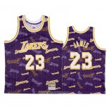Camiseta Los Angeles Lakers Lebron James #23 Hardwood Classics Tear Up Pack Violeta