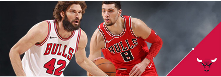 Camisetas baloncesto Chicago Bulls